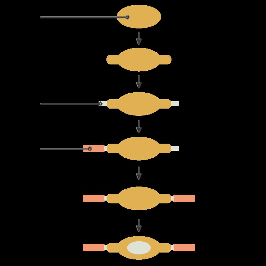 tutorial-flat-design-anak-kampus-membawa-scooter-di-adobe-illustrator 01
